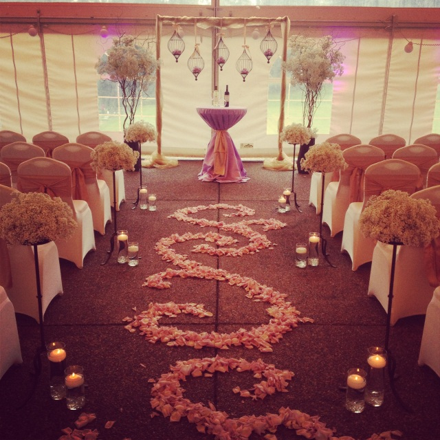 Lavender & Champagne Wedding Ceremony