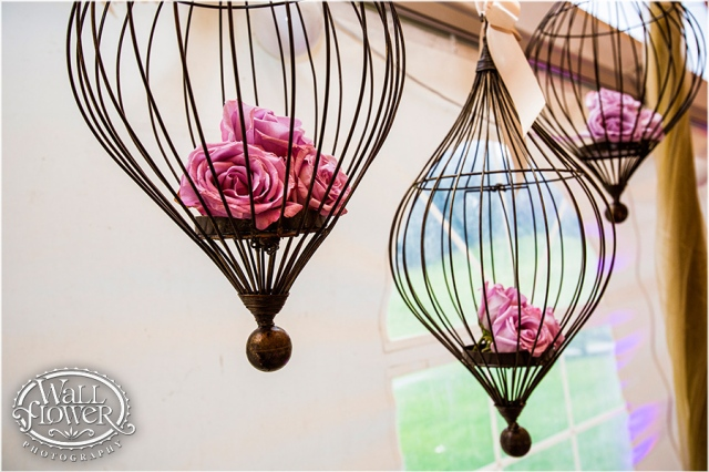 Suspended Wire Cages with Roses || WallflowerPhoto-Canterwood