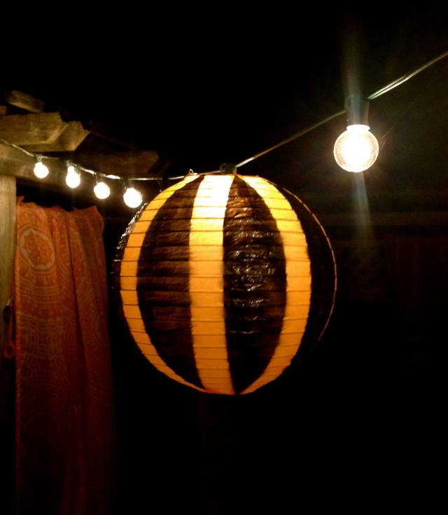 Painted Paper Lantern and Lights